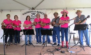 Ukulele Band at Upcountry Fair