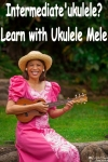 Intermediate Online Lessons (Single Month)